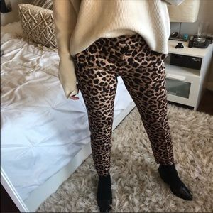 NWT's Zara Chino Animal Print Pants Size 38 6